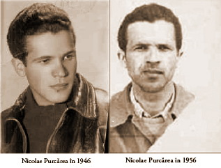Domnul-Neculae-Purcarea-in-1946-legionar-si-1956-detinut