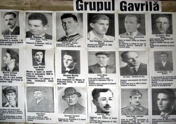 Grupul Ion Gavrila Ogoranu