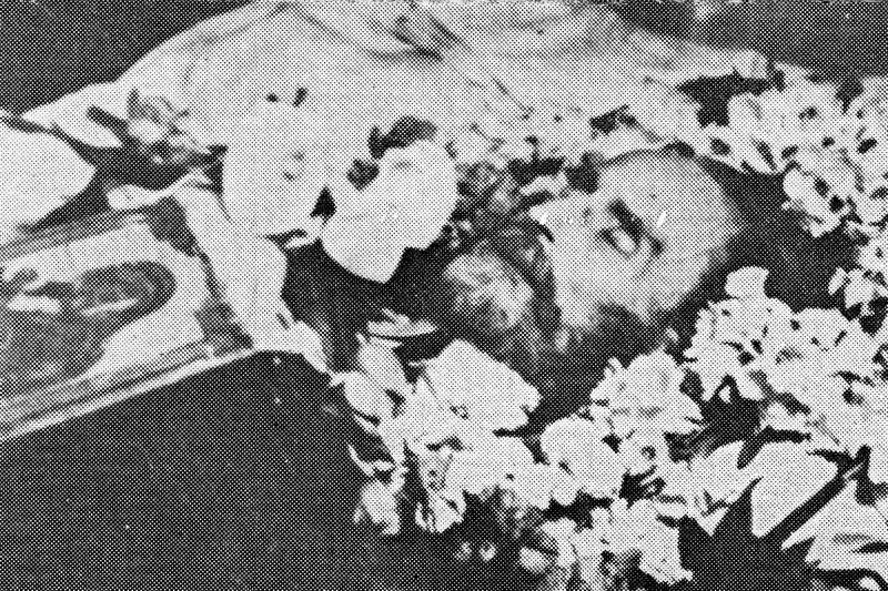 La inmormantarea lui Vasile Voiculescu Marturistorii Ro