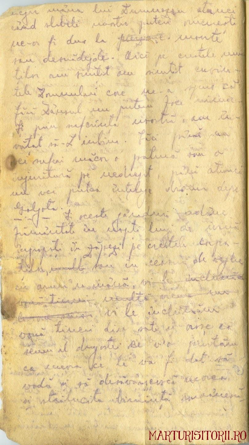 Testamentul Grupului Carpatin Fagarasan Ogoranu 4 - Manuscris CNSAS Marturisitorii Ro