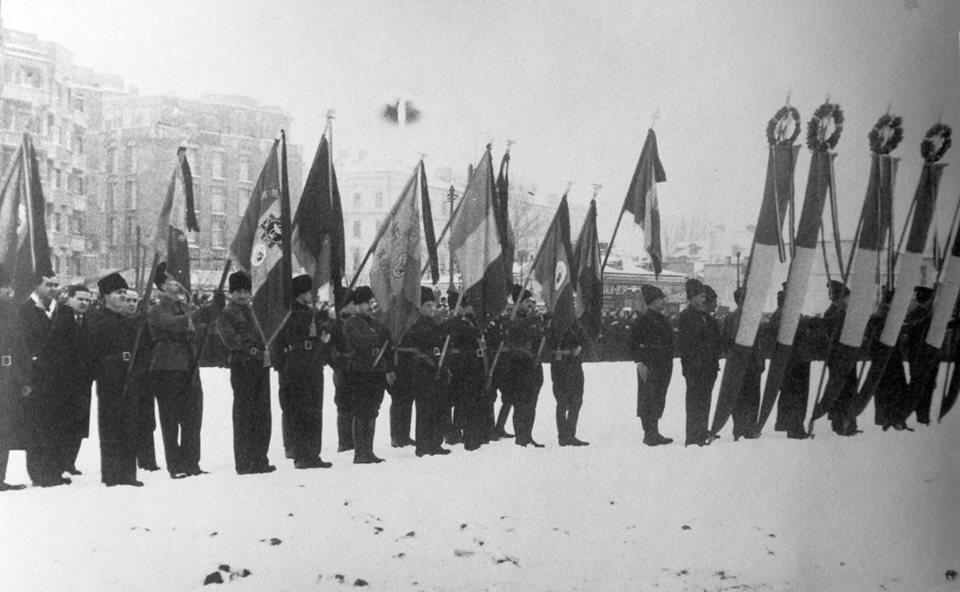 Steaguri Mota Marin