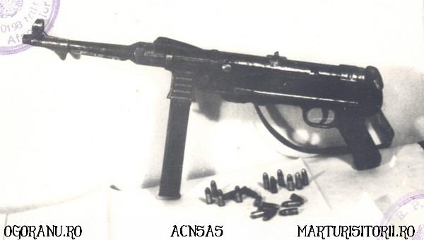 12 Arme Grupul de rezistenta armata Ion Gavrila Ogoranu - CNSAS - Marturisitorii