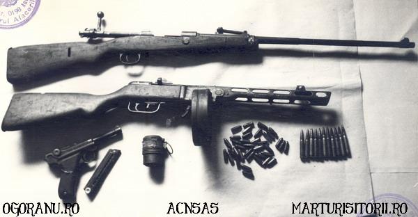 13 Arme Grupul de rezistenta armata Ion Gavrila Ogoranu - CNSAS - Marturisitorii