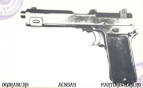 14 Arme Grupul de rezistenta armata Ion Gavrila Ogoranu - CNSAS - Marturisitorii