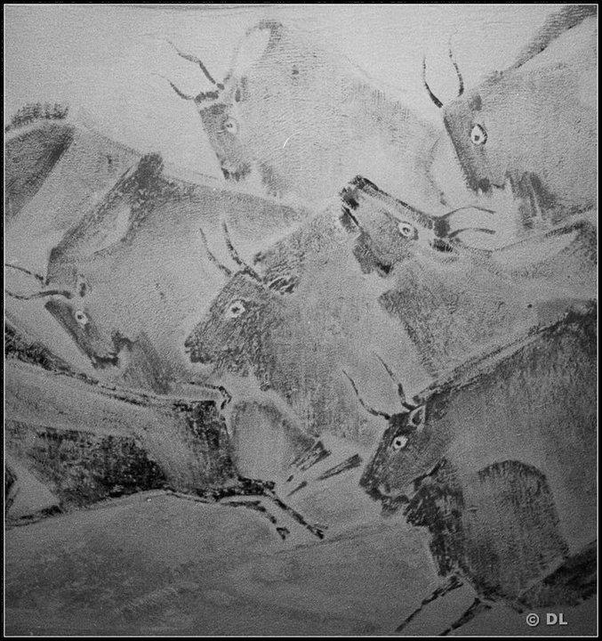 Noica la Paltinis Foto c Dinu Lazar 14 bizonii lui Vespasian Lungu